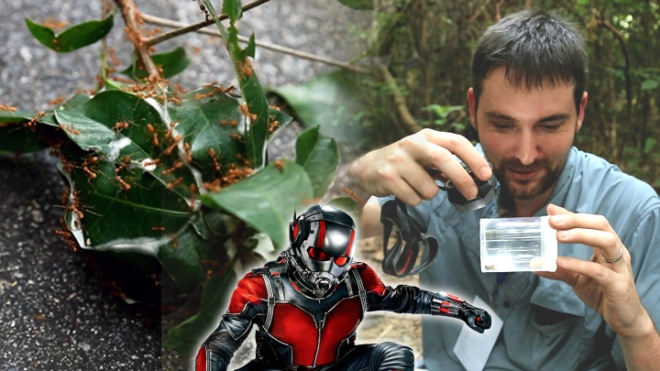 Benoit as the Hong Kong ant man!